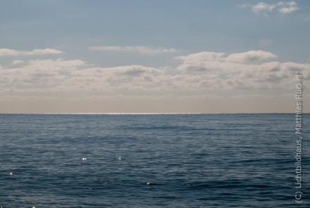 Reflektionen am Horizont