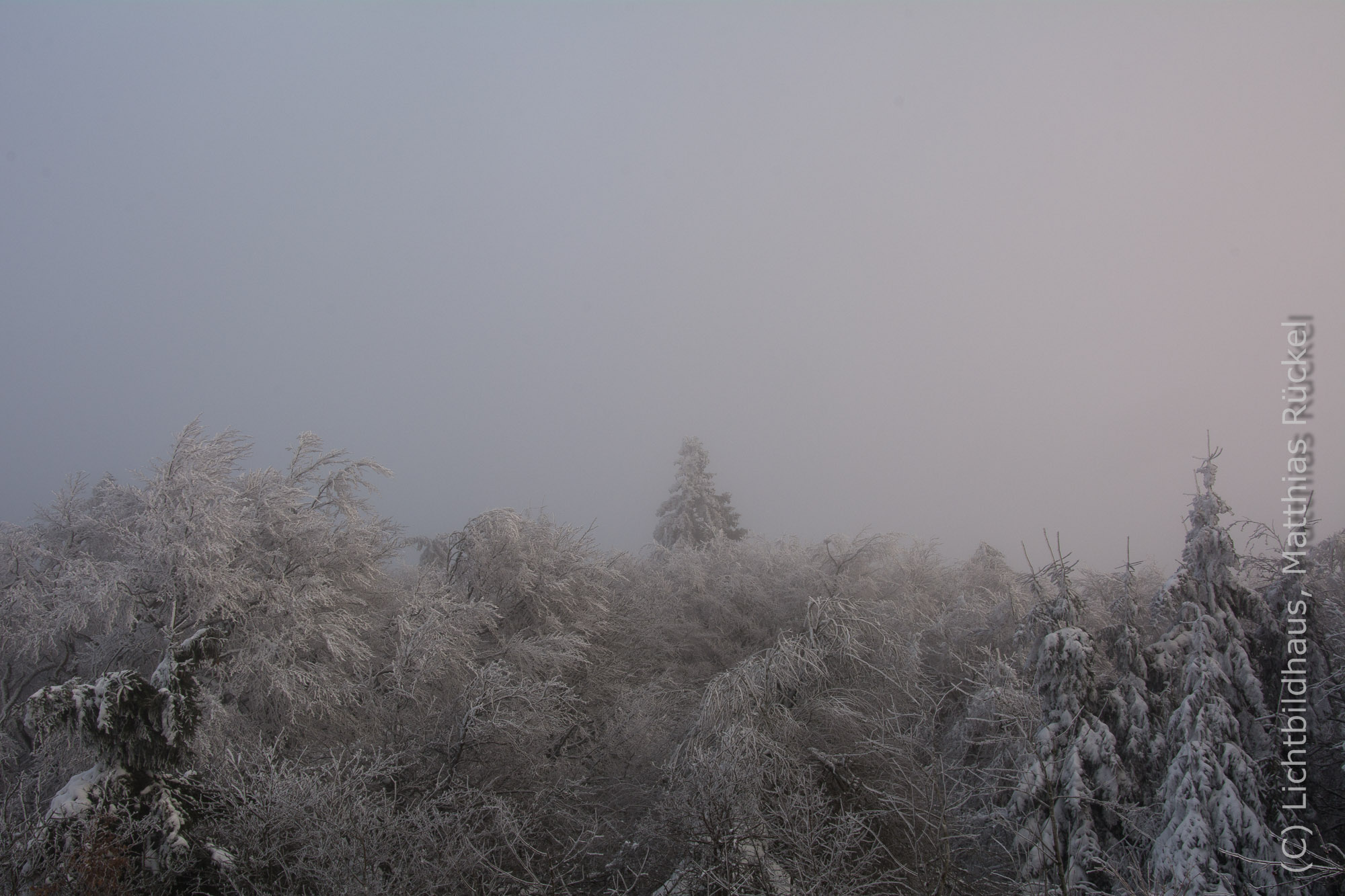 Feldberg im Schnee