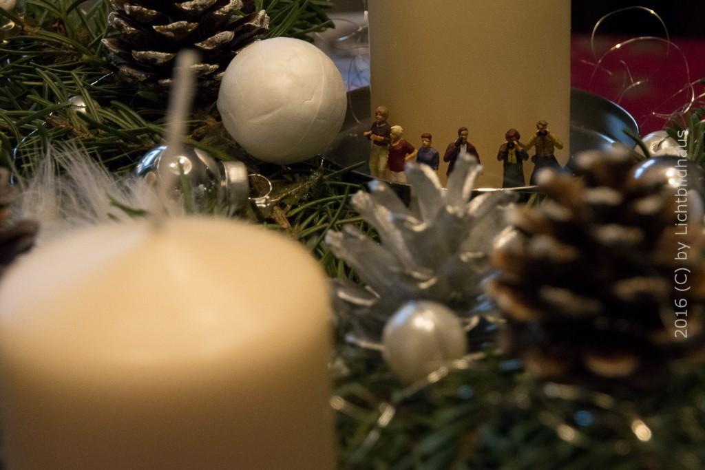 Aussicht auf den Adventsgarten