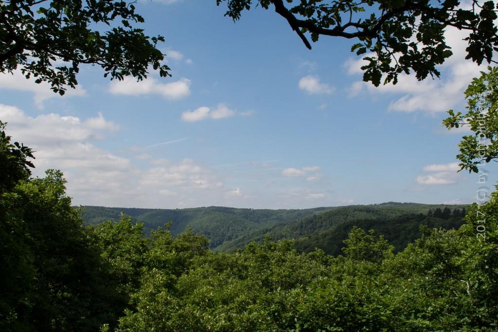 Waldgebiet